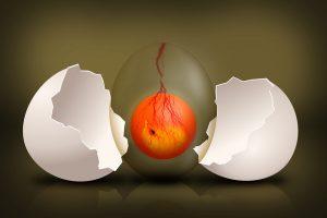 plamka krwi w jajku