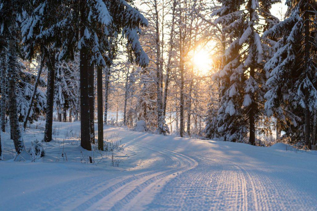 Na czym polega narciarstwo biegowe;