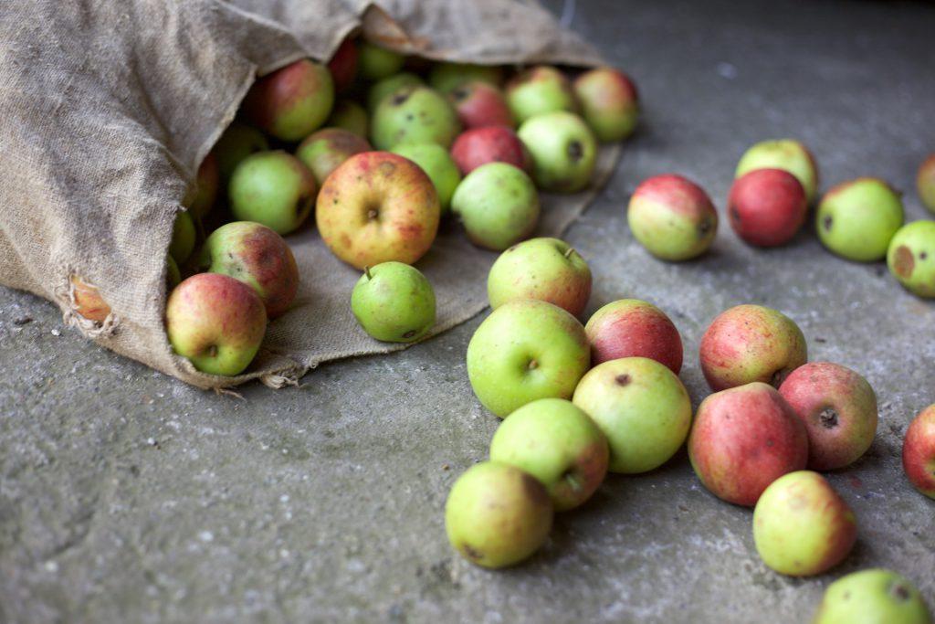 Jak wykorzystać jabłko w codziennej kuchni?