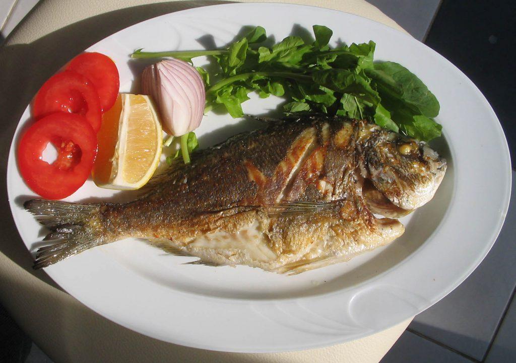 jakie cenne składniki odżywcze znajdują się w rybach