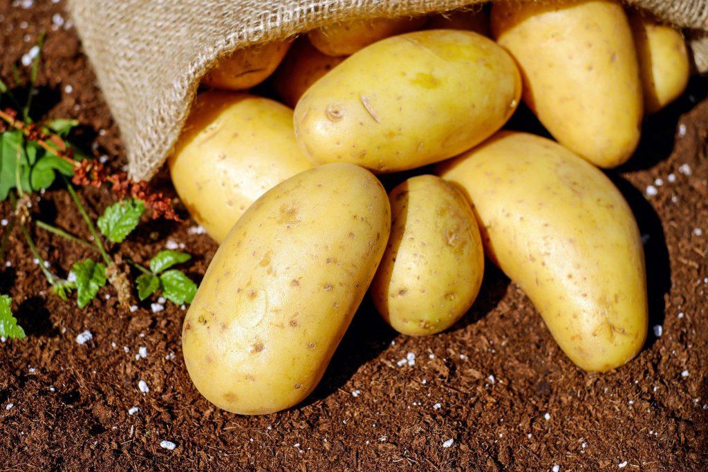 Jakie wartości odżywcze skrywają w sobie ziemniaki?