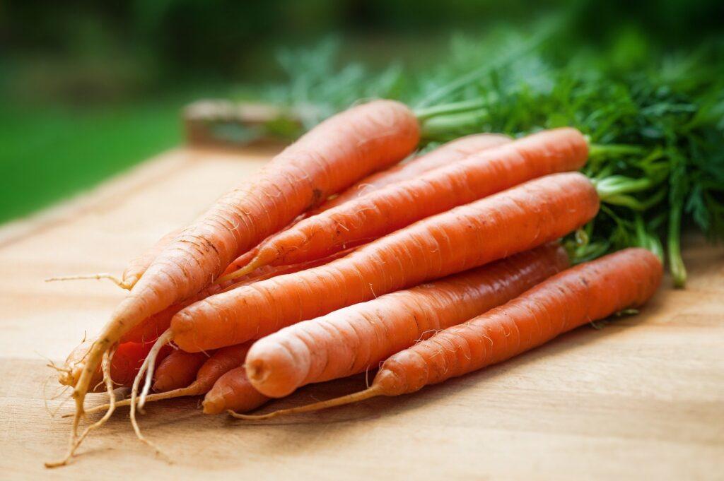 sierpniowe warzywa korzeniowe i cebulowe